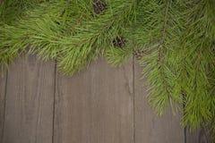 Bożenarodzeniowa dekoracja jedlinowy drzewo z sosną konusuje na drewnianym bac Obraz Royalty Free