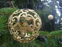 Bożenarodzeniowa dekoracja z zielonymi gałąź Zdjęcie Royalty Free