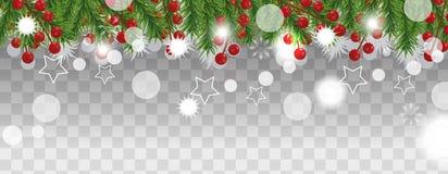 Bożenarodzeniowa i szczęśliwa nowy rok granica choinek gałąź z uświęconą jagodą na przejrzystym tle Wakacje dekoracja Ve ilustracji