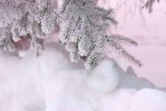 Bożenarodzeniowa piłka na mroźnych jedlinowych gałąź Zimy plamy tło obrazy royalty free