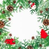 Bożenarodzeniowa round rama zim drzewa, sosna rożki i dekoracja na białym tle, piękny pojęcia sukni dziewczyny portret target1742 Zdjęcia Royalty Free