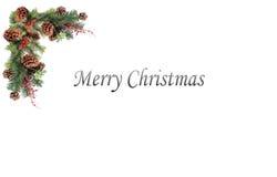 Bożenarodzeniowa tło etykietki sosna konusuje czerwone jagody i wsiadająca świąteczną girlandą Zdjęcia Stock