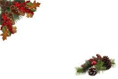 Bożenarodzeniowa tło etykietki sosna konusuje czerwone jagody i wsiadająca świąteczną girlandą Obrazy Stock