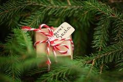 Bożenarodzeniowa teraźniejszość lub pudełko dla tajnego Santa na choinki gałąź tle obrazy stock