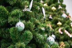 Bożenarodzeniowa trawy piłka na drzewie z pięknym ornamentem fotografia stock