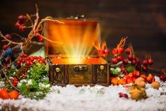 Bożenarodzeniowa zimy czarodziejka z cudem w rozpieczętowanym klatki piersiowej zimy plecy Fotografia Stock