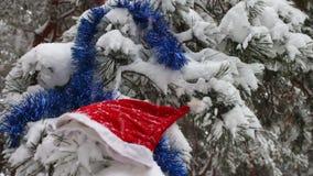 Bożenarodzeniowe śnieżyste gałąź w lesie dokąd tam są nakrętki Święty Mikołaj i choinki dekoracje zbiory wideo