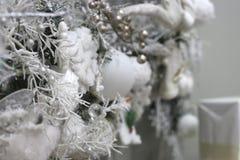 Bożenarodzeniowe dekoracji piłki na białym śnieżnym drzewie zdjęcia stock