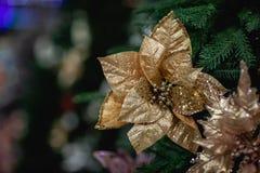 Bożenarodzeniowe złociste dekoracje, nowy rok dekoracje zdjęcia royalty free