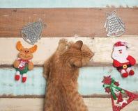 Bożenarodzeniowej dekoraci śliczny przedmiot z drewnianym tłem Zdjęcie Royalty Free
