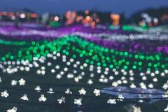 Bożenarodzeniowi girland światła na Bali zaświecają festiwal, Indonezja Obraz Royalty Free