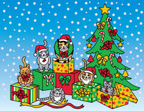 Bożenarodzeniowi koty Obraz Royalty Free