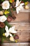 Bożenarodzeniowi kwiaty i na drewnie sosnowe gałąź Obrazy Royalty Free