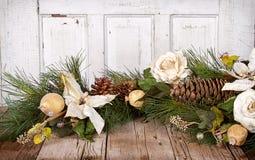 Bożenarodzeniowi kwiaty i na drewnie sosnowe gałąź Zdjęcia Royalty Free