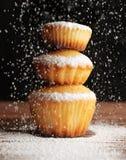 Bożenarodzeniowi muffins zakrywający sproszkowany cukier zdjęcie stock