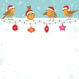 Bożenarodzeniowi ptaki ilustracja wektor