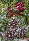 Bożenarodzeniowi sosna rożki, jagody i Fotografia Stock