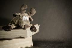 Bożenarodzeniowy łoś i książki Zdjęcie Stock