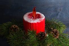Bożenarodzeniowy świeczka tort z karmelu płomieniem dekorował z sosnowym tre fotografia royalty free