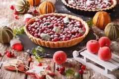 Bożenarodzeniowy cranberry tort z lodowacenie cukierem i świąteczną dekoracją obrazy royalty free