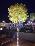 Bożenarodzeniowy dekoraci xmas drzewny Ateny Grecja obraz royalty free