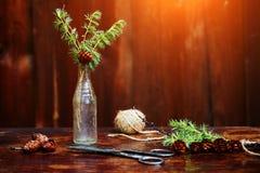 Bożenarodzeniowy drewniany tło Świerczyna rozgałęzia się i konusuje w rocznik butelce starych nożycach i podstępnym sznurze, Poję Zdjęcie Royalty Free