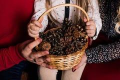 Bożenarodzeniowy nowego roku skład z dziewczyny mienia sosną konusuje kosz obraz royalty free