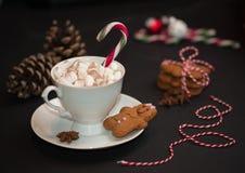 Bożenarodzeniowy pojęcie: filiżanka gorąca czekolada z candycane i mąci obraz stock