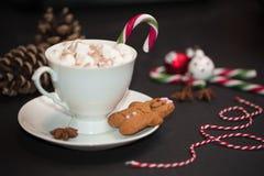 Bożenarodzeniowy pojęcie: filiżanka gorąca czekolada z candycane i mąci fotografia stock