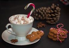 Bożenarodzeniowy pojęcie: filiżanka gorąca czekolada z candycane i mąci obrazy royalty free