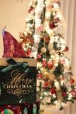 Bożenarodzeniowy prezent i choinka z światłami Zdjęcie Stock