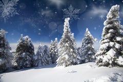 Bożenarodzeniowy tło z śnieżnymi jedlinowymi drzewami Zdjęcia Royalty Free