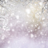 Bożenarodzeniowy tło z jedlinowym drzewem i błyszczeć Obraz Royalty Free