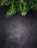 Bożenarodzeniowy tło z Jedlinowym drzewem na rocznika czerni desce z Zdjęcie Royalty Free