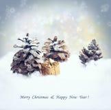 Bożenarodzeniowy tło z prezentem, jedlinowego drzewa rożek, opad śniegu Zdjęcie Stock