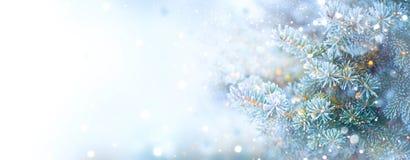 Bożenarodzeniowy Wakacyjny drzewo Rabatowy śnieżny tło płatki śniegu Błękitna świerczyna, piękni boże narodzenia i nowego roku Xm obrazy royalty free