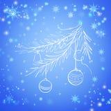 Bożenarodzeniowy wiecznozielony świerkowy drzewo Obraz Royalty Free