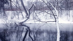 Bożenarodzeniowy zim tło krajobraz zdjęcie wideo