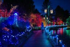 Bożonarodzeniowe światła festiwal Zdjęcie Stock