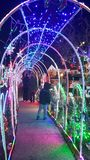 Bożonarodzeniowe światła galore Fotografia Stock