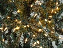 bożonarodzeniowe światła ornamentuje drzewa Obrazy Royalty Free