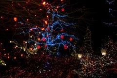 Bożonarodzeniowe światła wszystko wokoło mosta, drzewa, podpisują przy nocą, poczta domy i światła zdjęcia stock