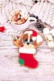 bożych narodzeń ciastek znaleziska wizerunki patrzeją więcej mój portfolio ten sam serie Z świąteczną dekoracją bożenarodzeniowi  Fotografia Royalty Free