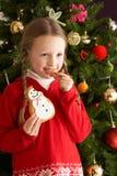 bożych narodzeń ciastka łasowania przodu dziewczyny drzewo Zdjęcia Royalty Free
