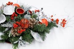 Bożych Narodzeń i nowy rok kwiatów skład Zdjęcie Royalty Free