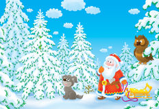 bożych narodzeń spojrzeń Santa drzewo Obraz Stock