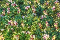 bożych narodzeń tekstury drzewo Obraz Royalty Free