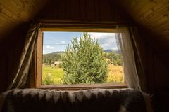 Bożych Narodzeń Tree świerczyna carpathians Okno w innego świat jasne słońce Okno w naturę zdjęcia stock