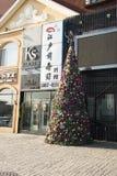 Bożych Narodzeń Tree Fotografia Stock