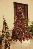 Bożych Narodzeń Tree Obrazy Stock